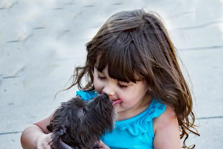 Best Pets for Toddlers